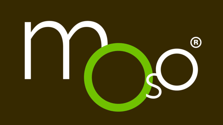 MOSO Africa Bamboo CPD Training